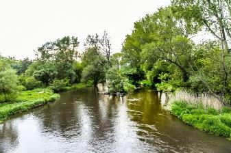 Gmina Spiczyn_6